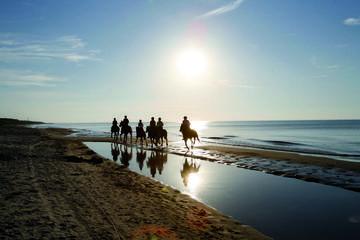 Strandreiten im Ostseebad Dierhagen